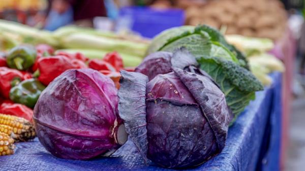 gesundes saisonales gemüse rotkohl