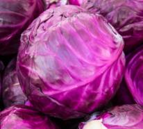 Warum ist Rotkohl so gesund und wie bereiten Sie diesen am besten zu