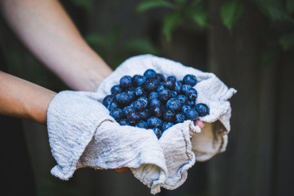 υπέροχες ιδέες για φρούτα Sirtfood diet