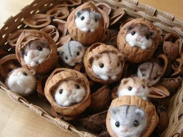 Basteln mit Walnüssen zu Weihnachten und nicht nur – Ideen und Anleitung mini mäuse filzen hamster