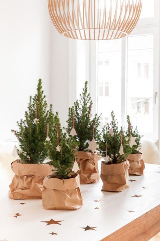 Kleinen Christbaum schmücken zur Schau stellen einige Weihnachtsbäume in Papiersäcken auf dem Küchentisch