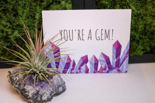 Liebliche und ausgefallene Geschenke für die beste Freundin luftpflanze und amethist stein