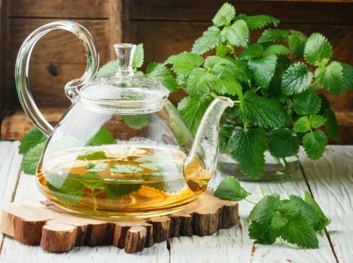 Tee selber machen wintertee weihnachtstee melissentee