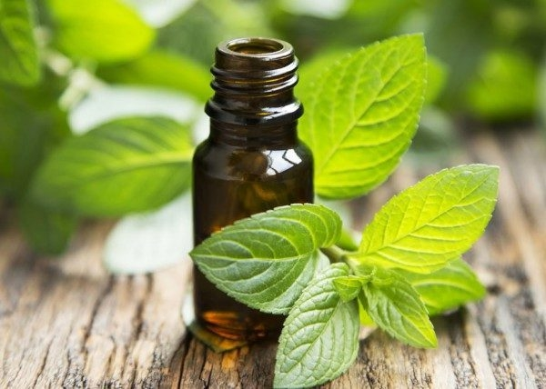 Was hilft gegen Juckreiz jukende Haut Hausmittel Pfefferminzöl