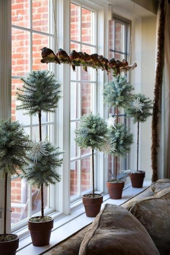 Weihnachtliche Fensterdeko klassische Deko Ast mit kleinen Vögeln einige Töpfe mit immergrünen Pflanzen auf der Fensterbank
