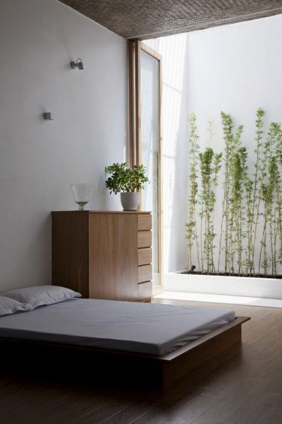 Zen Schlafzimmer eine frische grüne Note ins Interieur bringen grüne Pflanze