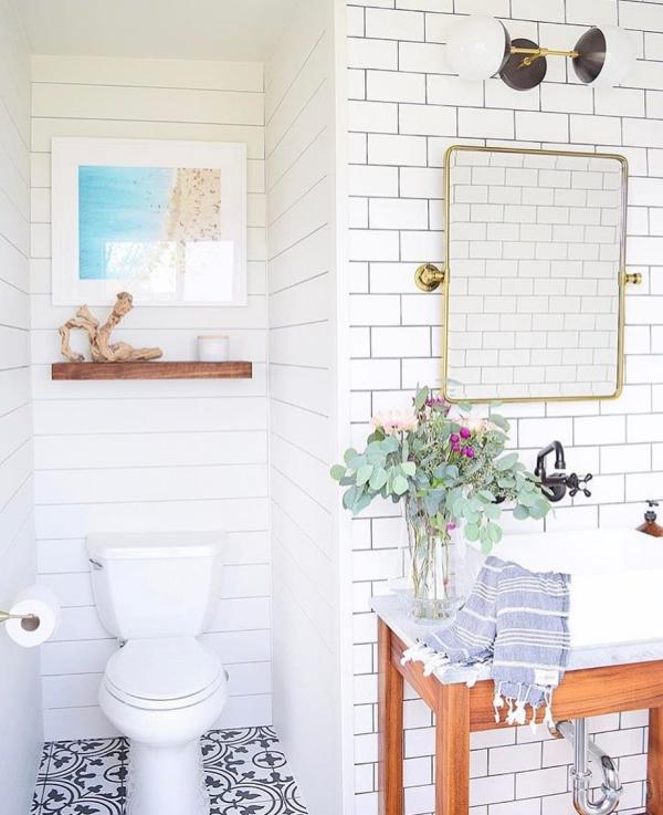 Eukalyptus Pflege Tipps für Hobbygärtner – puristische Zierpflanze im Überblick badezimmer deko ideen