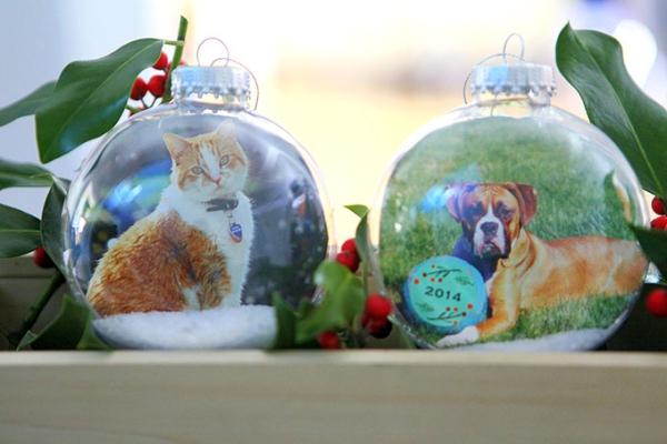 Fotogeschenke basteln zu Weihnachten – kreative Ideen und Anleitung katze hund haustiere ornamente
