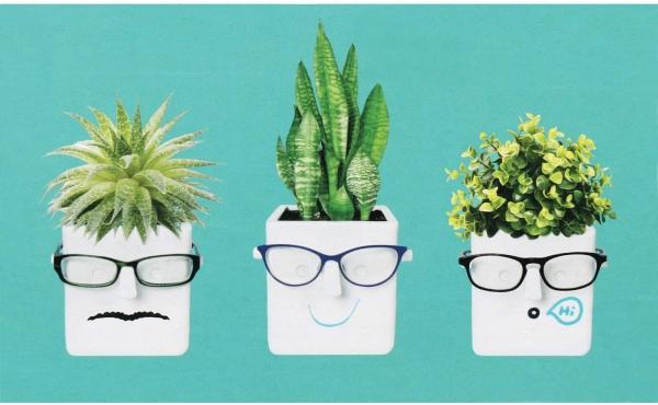 Witzige und praktische Online Schrottwichteln Ideen und Tipps blumenkasten und brillen halter