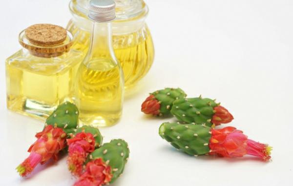 kaktusfeigenkernöl gesunde wirkung