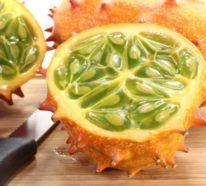 Kiwano – die leckere Fruchtpracht aus dem Süden genießen