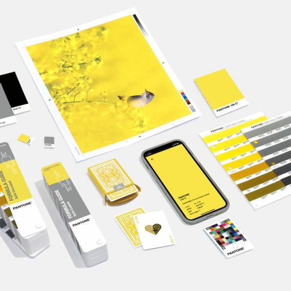 pantone farbe des jahres 2021 accessoires