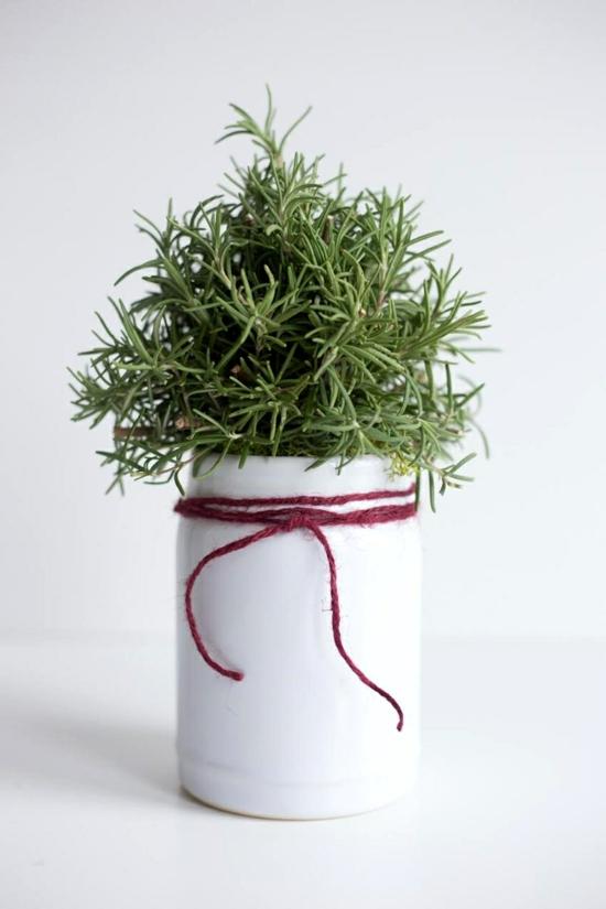 rosmarin bäumchen im glas diy weihnachtsgeschenke