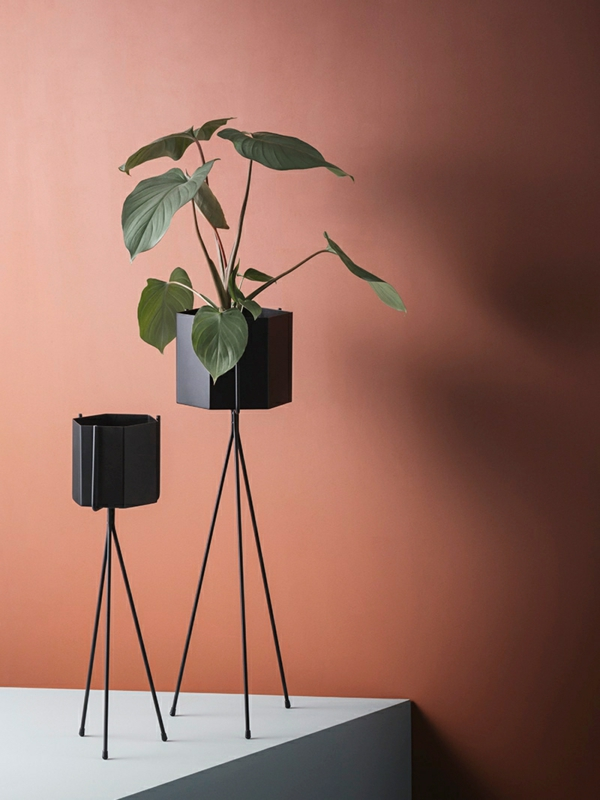 wandfarbe terrakotta schwarze blumentöpfe zimmerpflanze