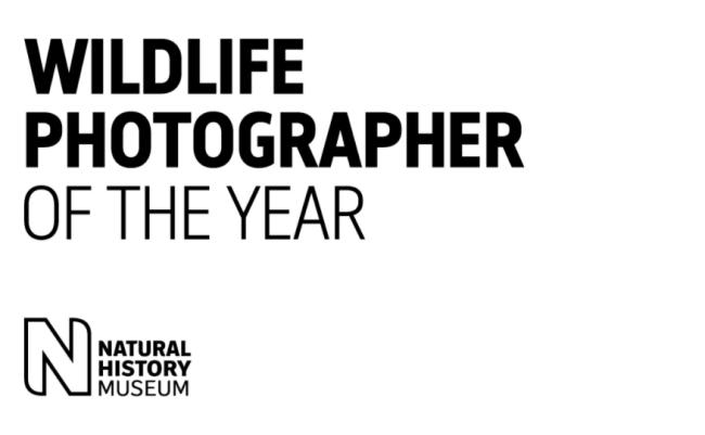 2020 Wildlife Photographer of The Year logo museum london