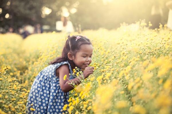 Child asian little girl smelling flower in the garden