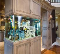 Aquarium zu Hause – bringen Sie die bunte Unterwasserwelt in Ihre vier Wände!