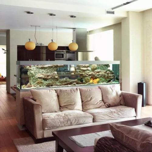 Μεγάλη λεκάνη ενυδρείου στο σπίτι Διαχωριστικό δωματίου μεταξύ καθιστικού και κουζίνας εύκολα προσβάσιμο από όλες τις πλευρές