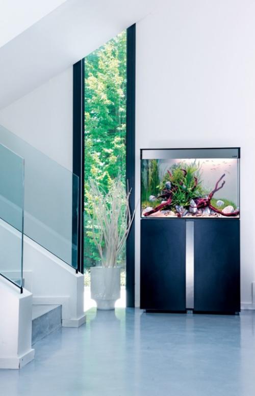 Aquarium zu Hause im Flur sehr moderne Gestaltung auf einem stabilen Schrank Hingucker fenster Blick auf den Innenhof
