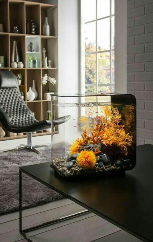 Ενυδρείο στο σπίτι υπέροχο μάτι στο τραπέζι του καφέ στο μοντέρνο σαλόνι