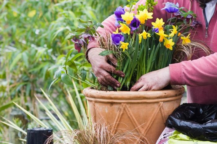 Frühlingsdeko basteln mit Naturmaterialien garten und pflanzen