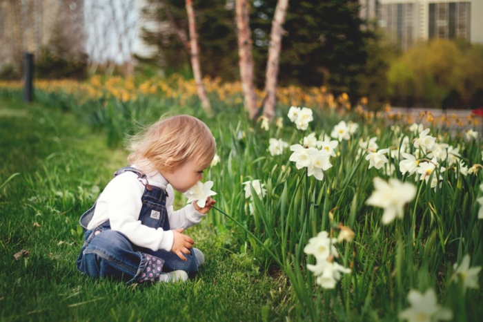 Frühlingsdeko basteln mit Naturmaterialien weide kind