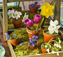 Frühlingsdeko basteln mit Naturmaterialien- 33 kreative DIY Ideen
