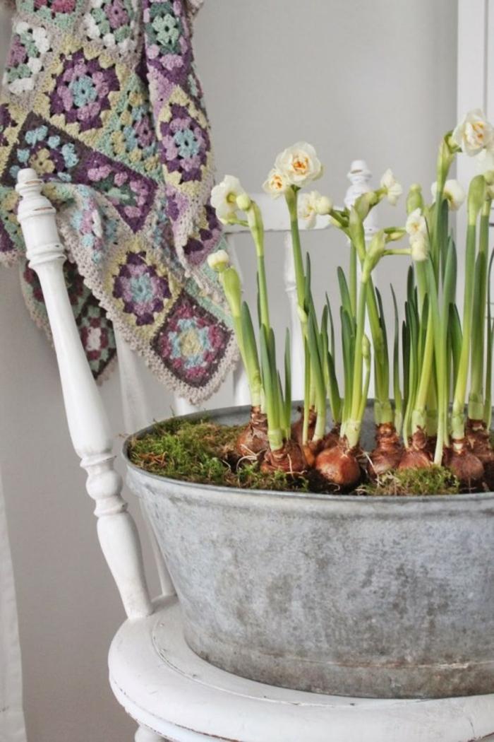 Frühlingsdeko basteln mit Naturmaterialien zarte lila blüte moos