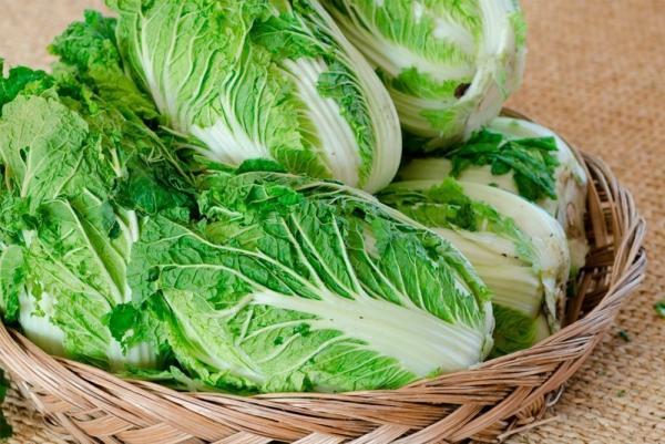 Υγιέστερα λαχανικά Κορυφαία 5 από τα πιο θρεπτικά είδη κινεζικού λάχανου υπέροχα υγιή