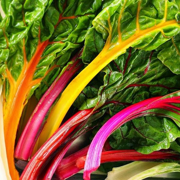 Gesündestes Gemüse Top 5 der nahrhaftesten Sorten mangold bunt lecker schön