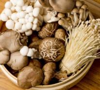 Gesundes Essen in Corona Zeiten – welche Lebensmittel stärken das Immunsystem?