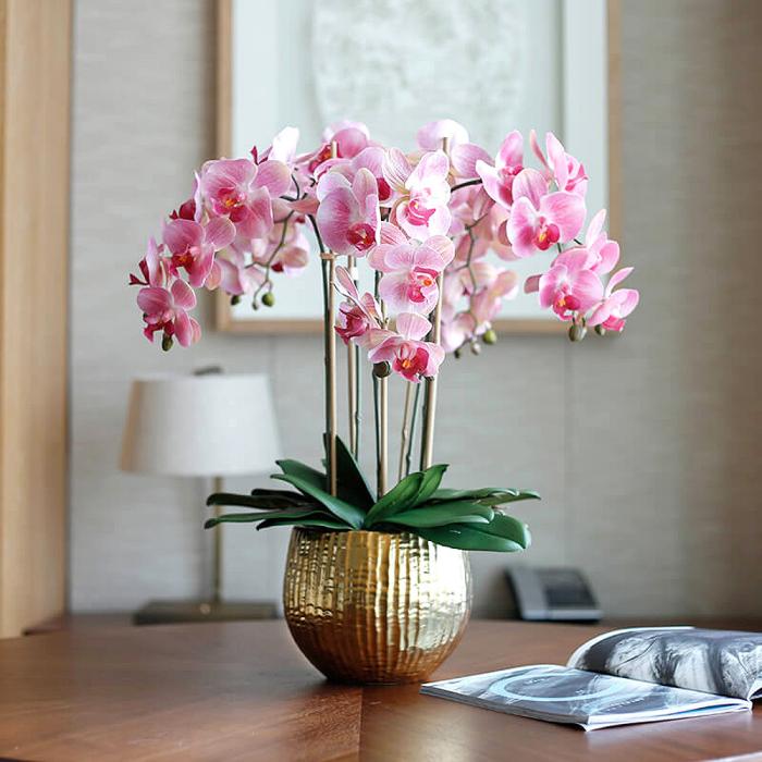 Orchideen richtig pflegen mehrjährig wunderschöne rosafarbene Blüten Tischdeko goldener Blumentopf