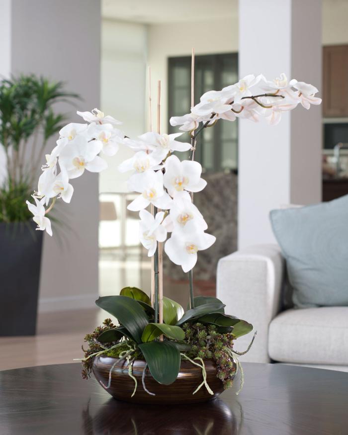 Orchideen richtig pflegen schöne weiße Blüten dunkelbrauner Topf als Tischdeko Blickfang