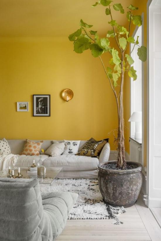 Trendfarben 2021 im Interieur Akzentwand im leuchtendem Gelb schickes Wohnzimmer hohe Zimmerpflanze