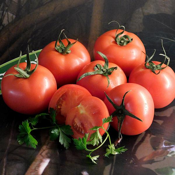 strahlende Gesichtshaut gesunde Lebensmittel rote Tomaten enthalten zahlreiche Vitamine und Antioxidanten