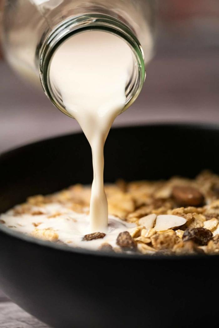 vegane milch selber machen gesunde frühstücksideen