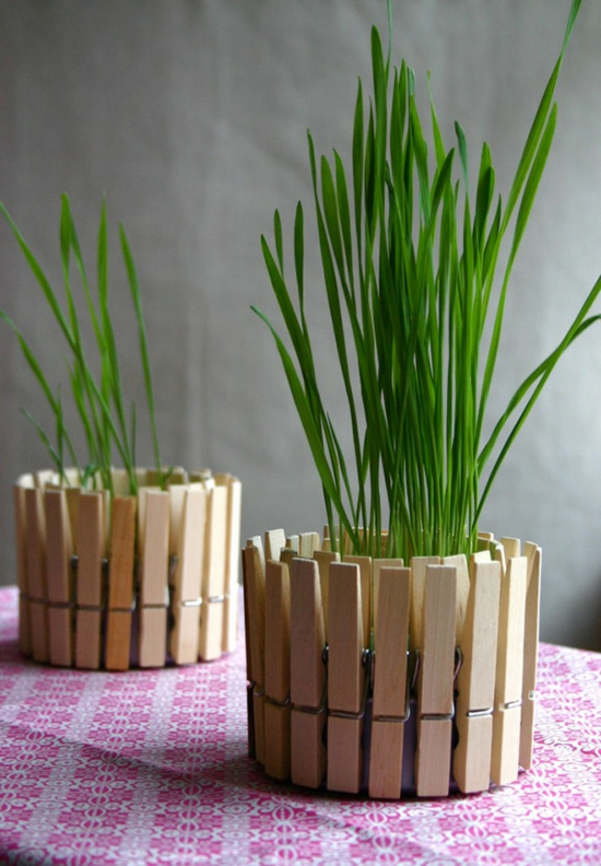 wäscheklammer upcycling vasen basteln für erwachsene