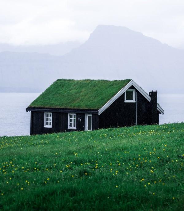 Ökologische Außenfassaden So wird das eigene Haus umweltbewusster haus natur wiese dach