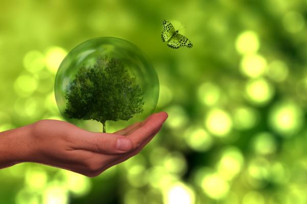 ökostrom klimaschutz