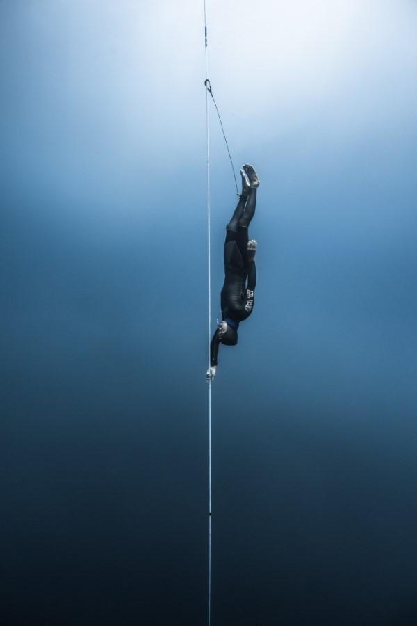 2020 Tokyo International Foto Awards – Top 20 Gewinnerfotos des Jahres beneath the surface