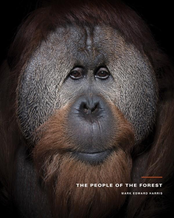 2020 Tokyo International Foto Awards – Top 20 Gewinnerfotos des Jahres people of the forest