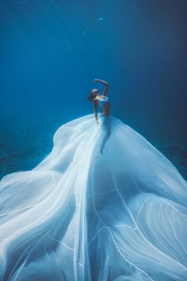 2020 Tokyo International Foto Awards – Top 20 Gewinnerfotos des Jahres queen unterwasser