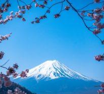 Februar ist der nationale Monat des Haiku Gedicht Schreibens