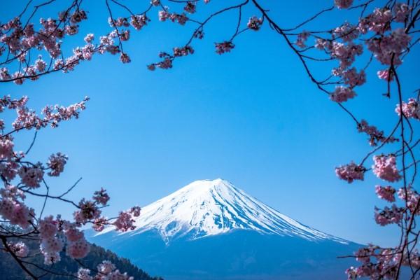 Februar ist der nationale Monat des Haiku Gedicht Schreibens fuji berg blüten