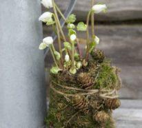 Frühlingsdeko selber machen- 52 DIY Ideen für Basteln mit Naturmaterialien