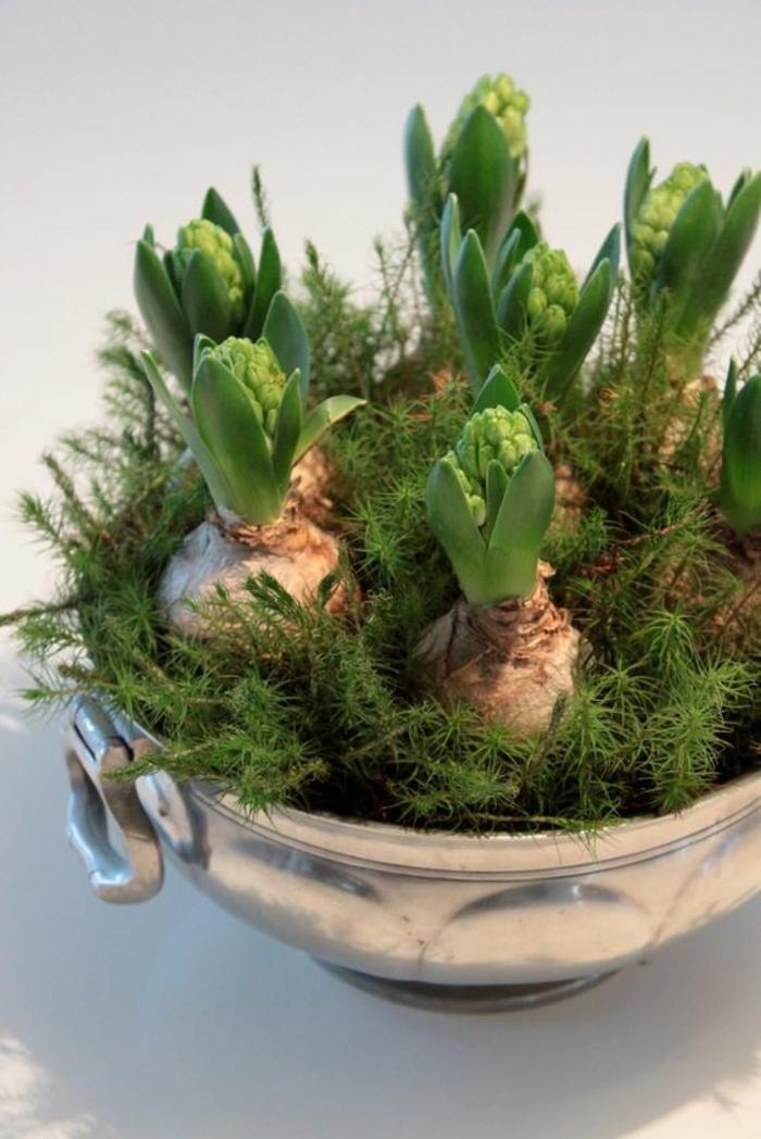 Frühlingsdeko selber machen basteln mit naturmaterialien moos hyazynth
