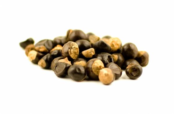 Guarana exotische Frucht Samen Alternative zu Kaffee