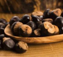Guarana – die schonende Alternative zu Kaffee