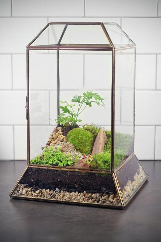 Minigarten im Glas alte Laterne einfache Materialien Steine Substrat Moos viel Grün schöner Blickfang