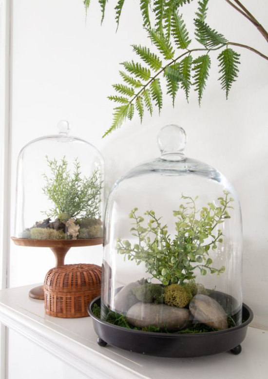 Minigarten im Glas auf der Kommode schöne Figur machen tolle Raumdekoration Blickfang